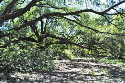 1356 S Live Oak Drive - Photo 1