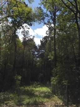 6303 Bears Bluff Road - Photo 1