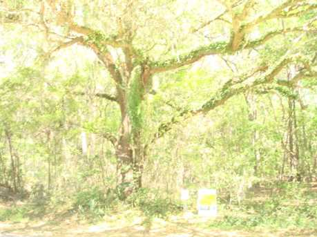 046 Chisolm Plantation Rd - Photo 1