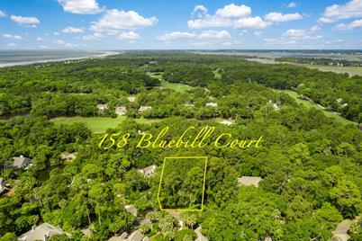 158 Bluebill Court - Photo 1