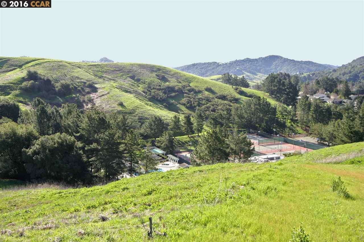 Additional photo for property listing at 1161 Larch Ave  MORAGA, CALIFORNIA 94556