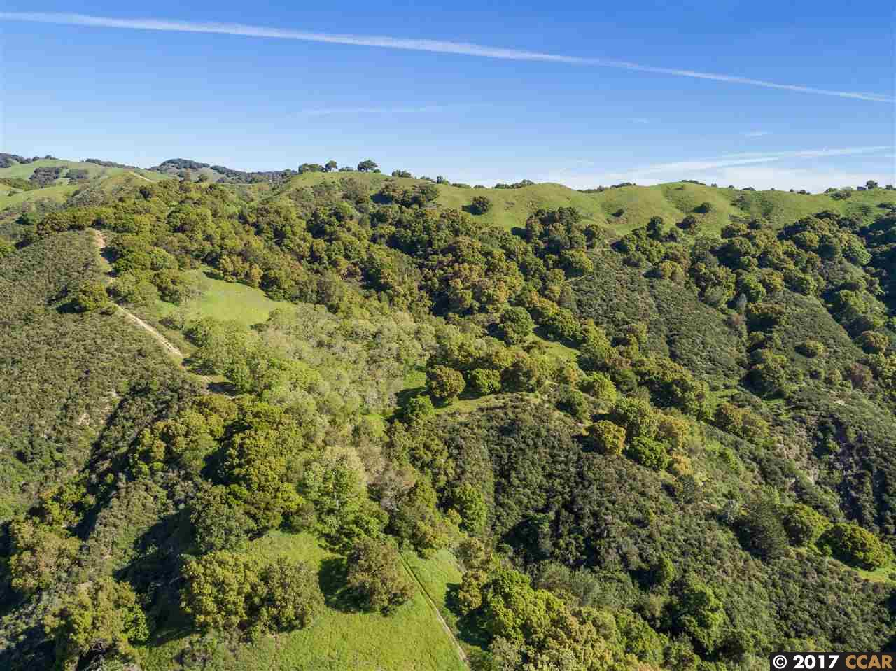 Additional photo for property listing at 1240 Monticello Rd  LAFAYETTE, CALIFORNIA 94549