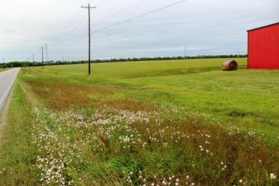 0 County Road 45 (159+/- Acres) - Photo 1