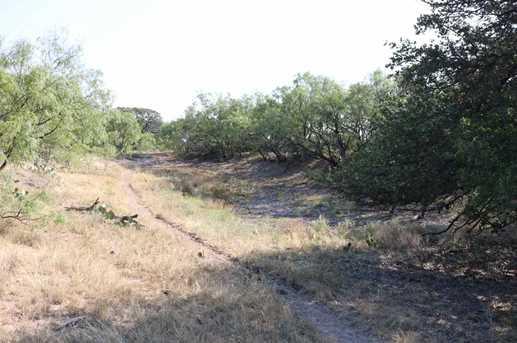 385 Acres Creek 116 - Photo 9