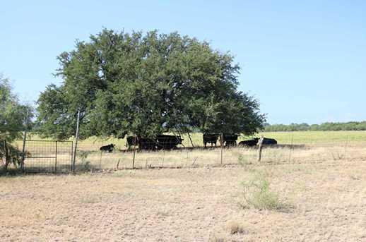 385 Acres Creek 116 - Photo 13