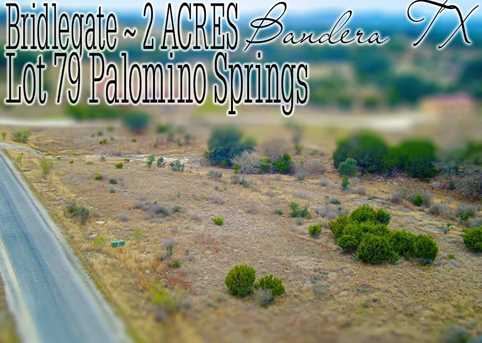 Lot 79 Palomino Springs - Photo 1