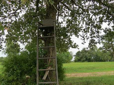 Tbd Pin Oak - Photo 1