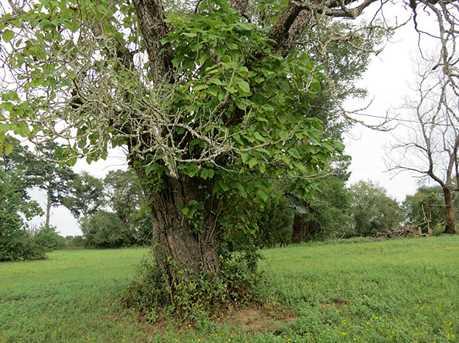 Tbd Pin Oak - Photo 9