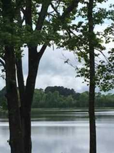 239 Spring Lake Dr - Photo 7