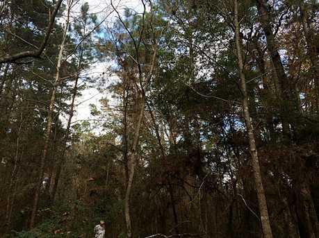 00 Par Tree - Photo 3