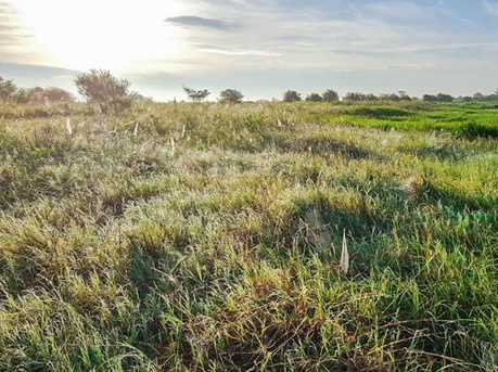 5731 Mieth - Photo 11