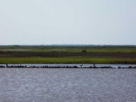 2365 Cr 230 / Canal Drive - Photo 3