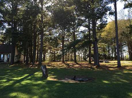 00 Pine Tree - Photo 5