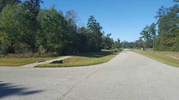 27439 Blue Cedar Lane - Photo 7