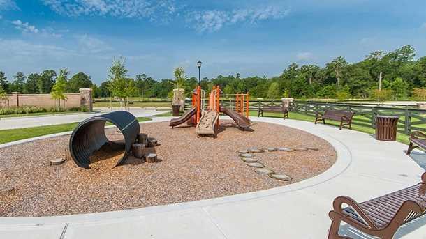 23214 Creek Park Dr - Photo 5