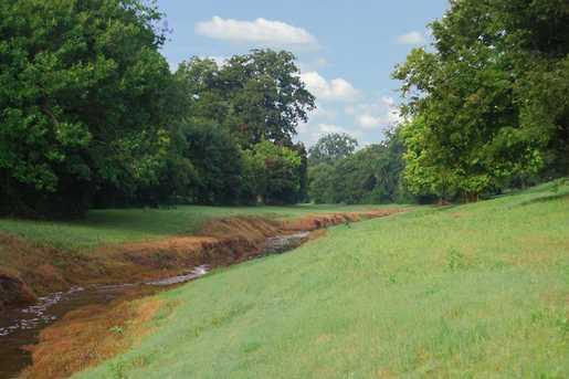 31803 Fulshear Creek Trail - Photo 31