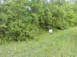 5 Acres Hwy 35 - Photo 5