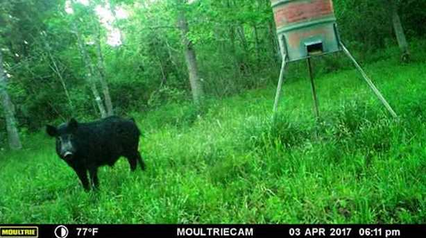 635 County Rd 2041 - Photo 15