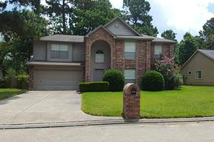 29002 Pine Forest - Photo 1