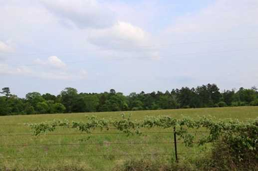 Tbd County Road 232 - Photo 13