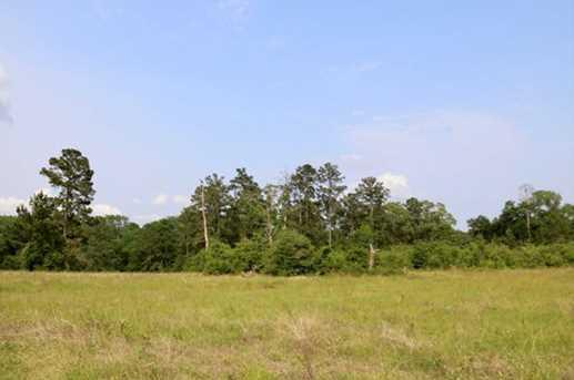 Tbd County Road 232 - Photo 5