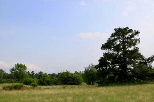 Tbd County Road 232 - Photo 17
