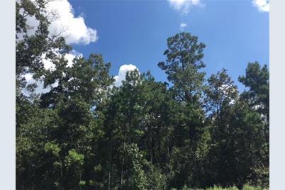 27427 Shady Hills Landing - Photo 1