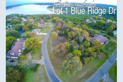 Lot 1 Blue Ridge Drive - Photo 1