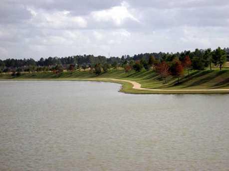 14510 Cypress Links Trail - Photo 3