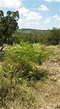 414 S Ridge - Photo 3