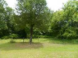 000 Cottonwood - Photo 5