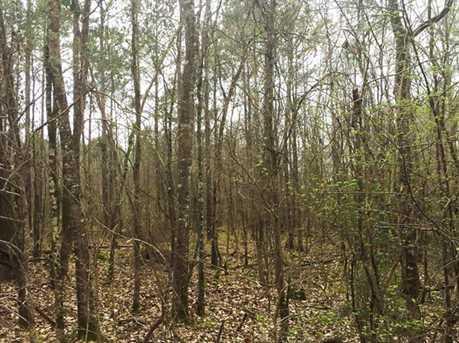 1837 Ac Wilderness - Photo 1