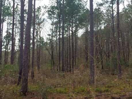 1837 Ac Wilderness - Photo 5