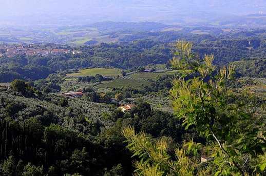 0 Loc San Martino Pulicciano - Photo 5