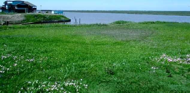 2219 Cr 230 Canal Drive - Photo 3