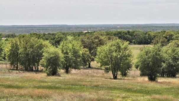 1487  County Rd 402 - Photo 1