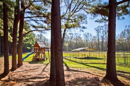 24041  Stallion Park Place - Photo 1
