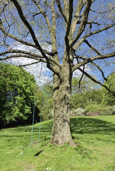 1012 Magnolia - Photo 23