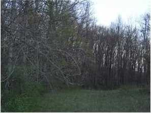 0 Town and Country Road - Photo 11