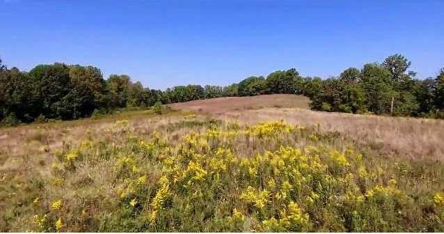 379 Rural Valley Road - Photo 7