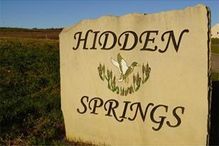 120 Hidden Springs Dr - Photo 1