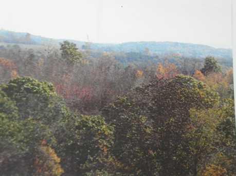 471 Summit Ridge Rd - Photo 19