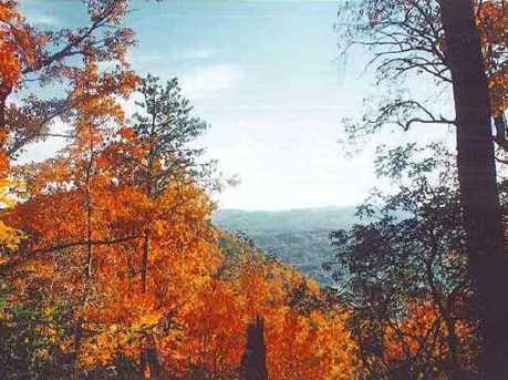 17 Chestnut Mountain #17 - Photo 3