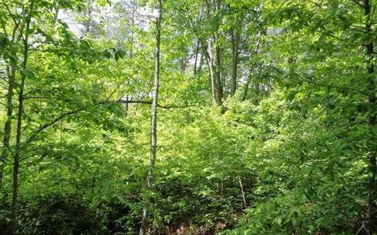 0 Shewbird Woods #2 - Photo 3