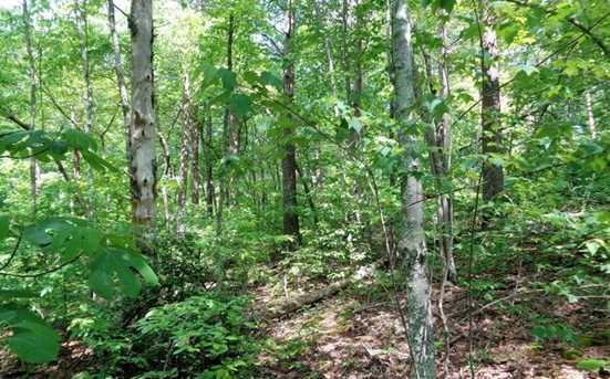 0 Shewbird Woods #2 - Photo 7