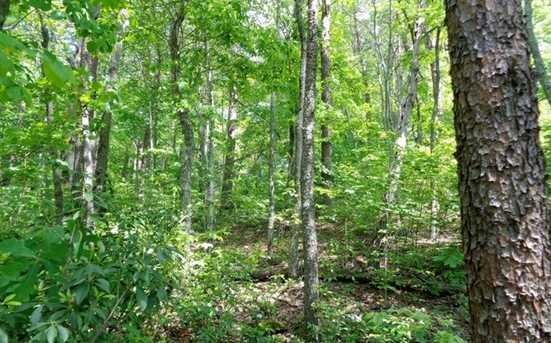 0 Shewbird Woods #2 - Photo 5