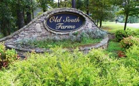 0 Old South Farms #Lt 41 - Photo 3