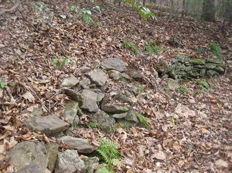 312 Jonas Mountain Rd - Photo 9