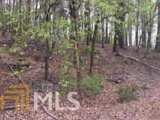 0 Old Lake Russell Rd #Lot 14 - Photo 7