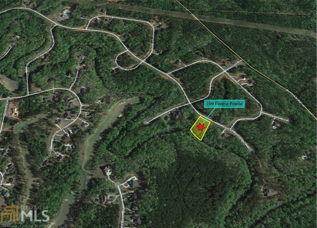 Forsyth Georgia Map.109 Forest Pointe Dr Forsyth Ga 31029 Mls 8484452 Coldwell